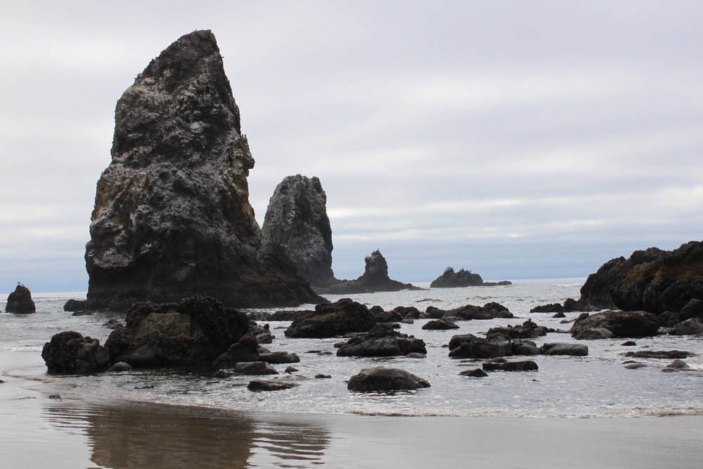 Needles - Cannon Beach, Oregon