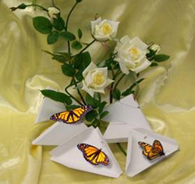 butterfly-releases.jpg