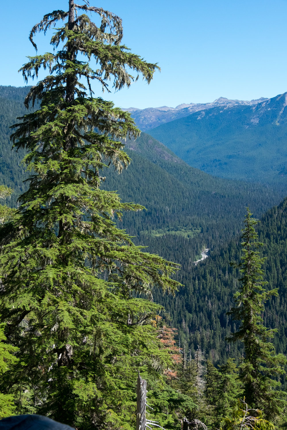 Wilderness - Discover what wilderness is and learn about soundscapes.