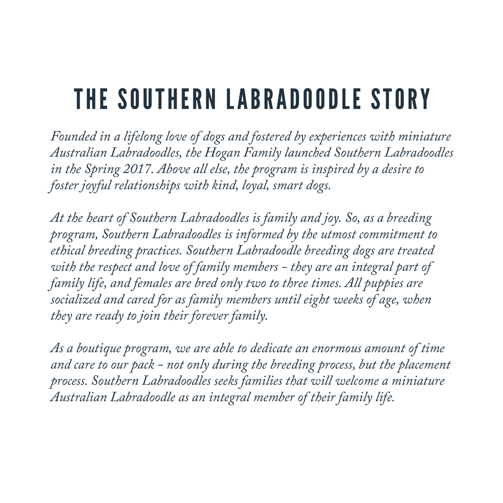 Updated Southern Labradoodles Brand Book-05.png