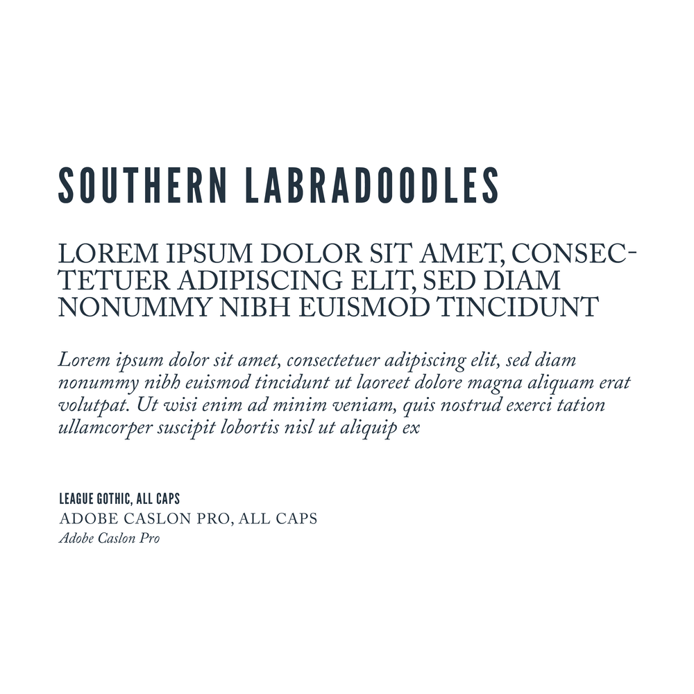 Updated Southern Labradoodles Brand Book-16.png
