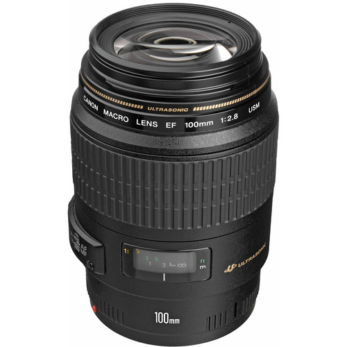 Canon 100mm f/2.8 Macro USM Lens - This lens is great for close ups of the ring photos or anything small detailed. This is produces some great photos to put into your album of the little things like jewelry or that small