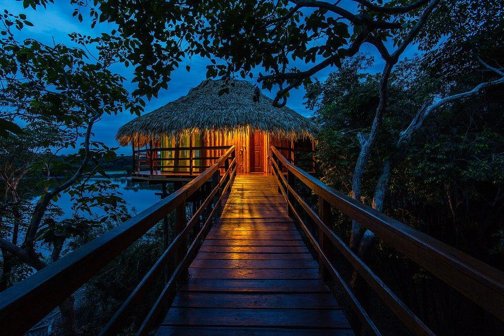 Juma Lodge in the Amazon Jungle, Brazil