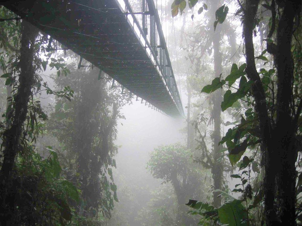 Hanging Bridge, Monteverde