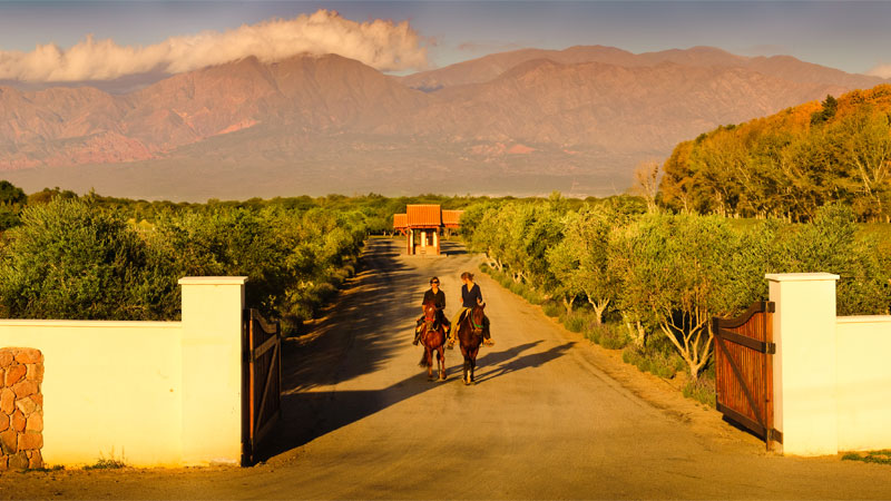 Wineries at Grace Cafayate - Northern Argentina