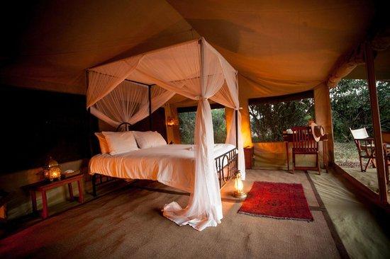Day 5 - Sentinel Mara Camp, Masai Mara National Reserve