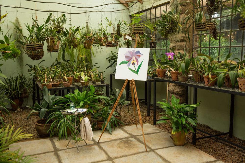 The Orchid House at Giraffe Manor, Nairobi, Kenya