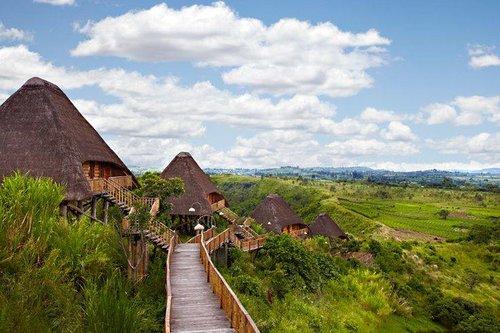 Day 3 - Kyaninga Lodge, Kibale Forest National Park, Uganda