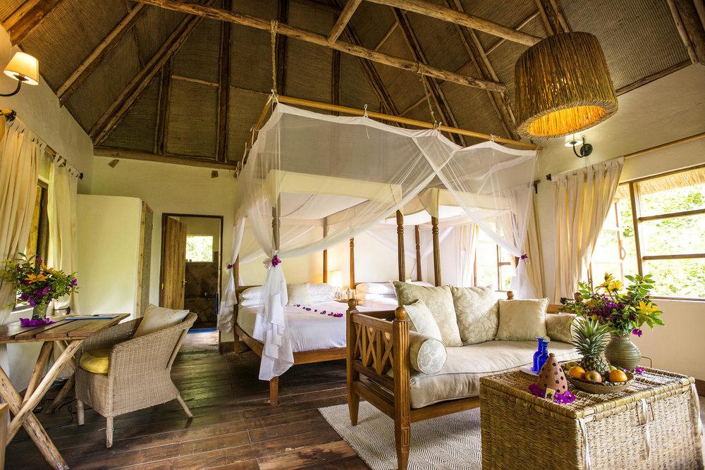 Day 6 - Depart to Bwindi Lodge, Bwindi Impenetrable Forest, Uganda