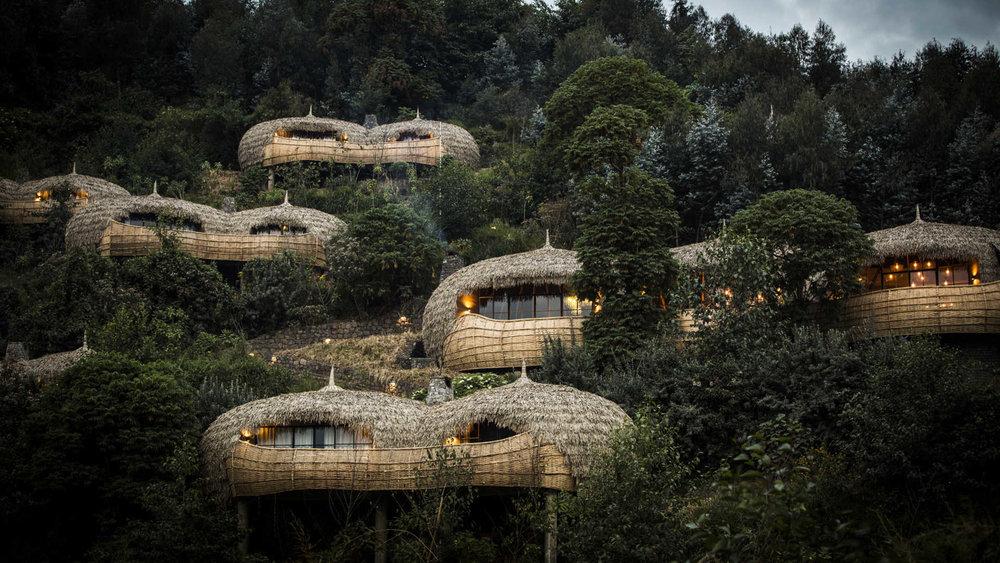 Day 10 - Bisate Lodge, Volcanoes National Park, Rwanda