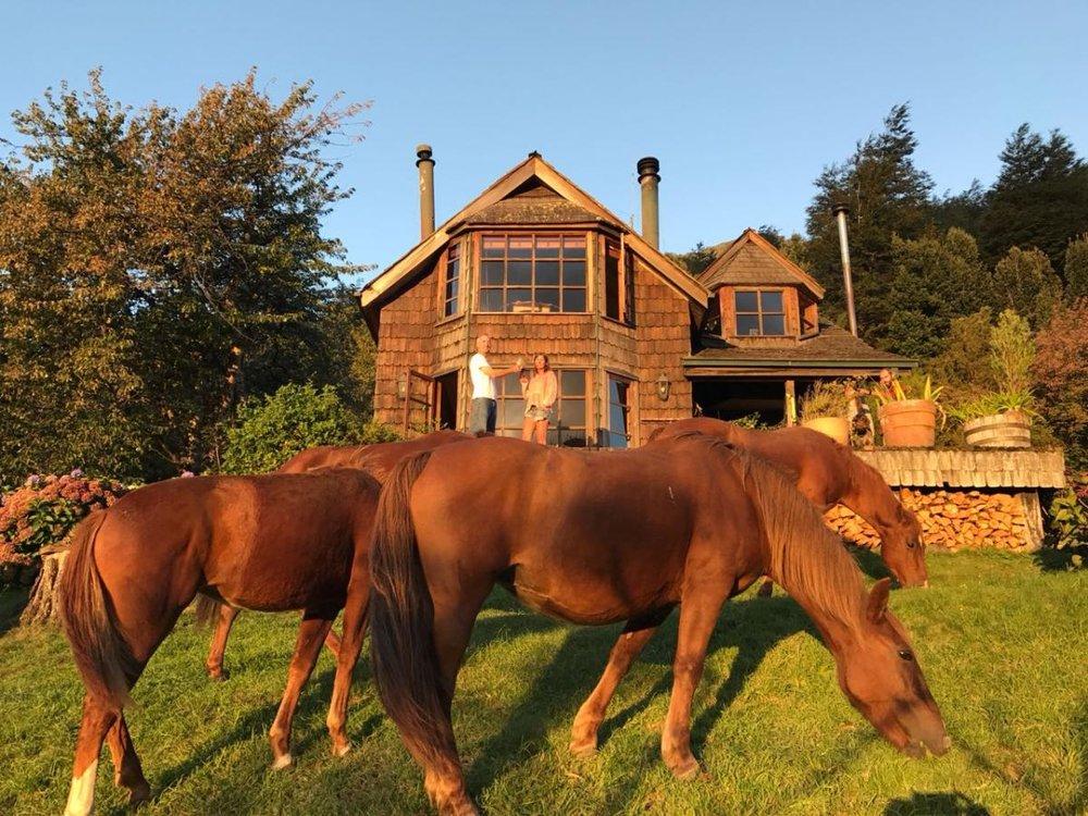 Friendly neighbors at Barraco Lodge