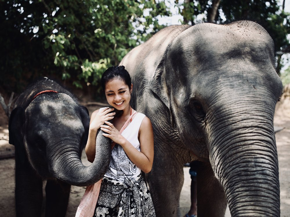Elephant kisses at the Elephant Retirement Home in Phuket. PC:  Reed