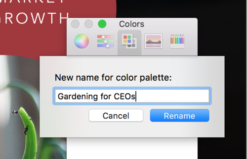 Give your palette a name