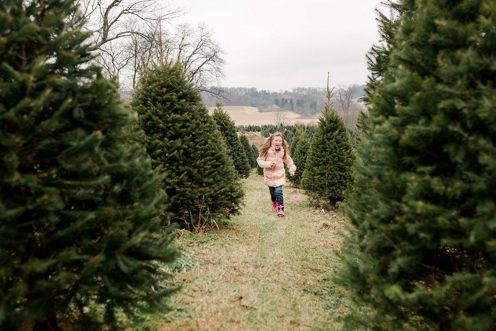 TreeFarm2018-34.jpg