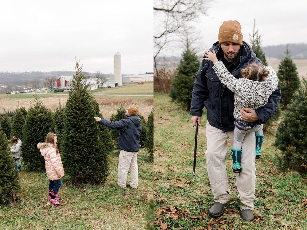 TreeFarm2018-37.jpg