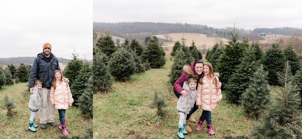 TreeFarm2018-50.jpg