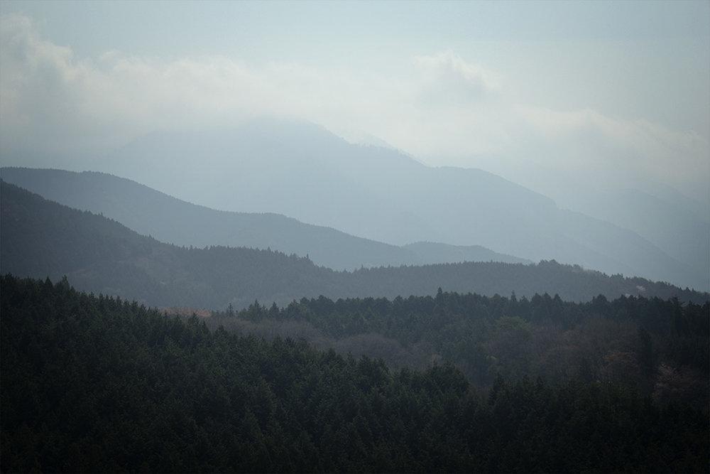 In_The_Mist.jpg