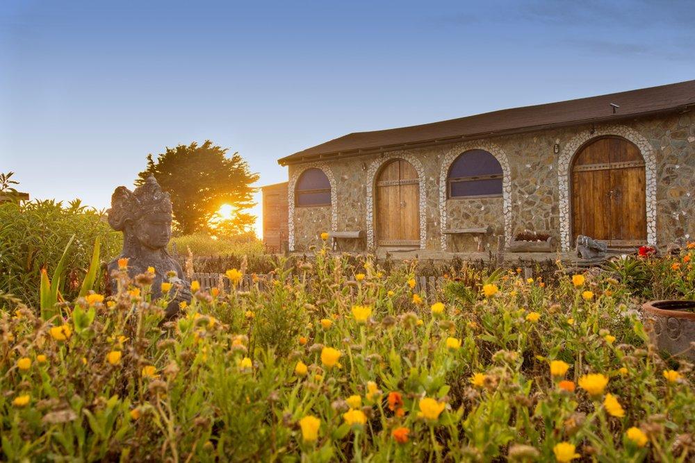 Retiro Yoga Punta de Lobos - Yoga, Chakras, alimentación consiente y cocina3, 4 y 5 de Agosto-