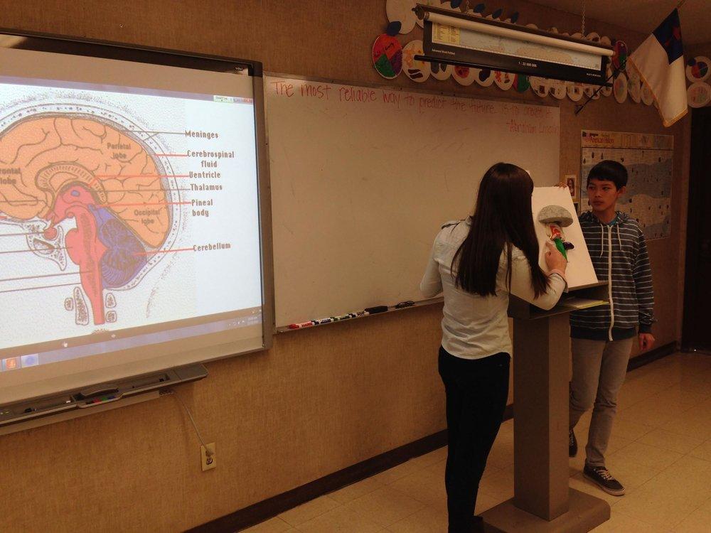 Health Class Neuro System presentation