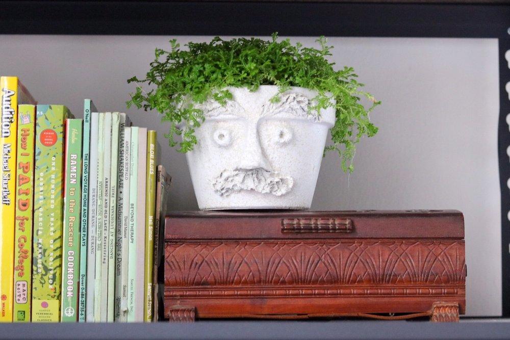 DIY Paper Mache Terracotta Faces   #papermache     #upcycle     #pottery    #pots     #houseplantclub     #houseplants    #homedecor     #facemask