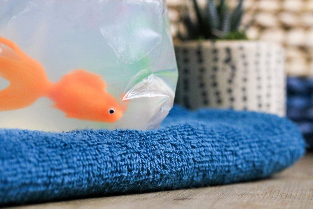 Fish in a Bag Soap DIY #handmadesoap #handmade #goldfish #bathroomdecor #bathroom #soap #fishinabag