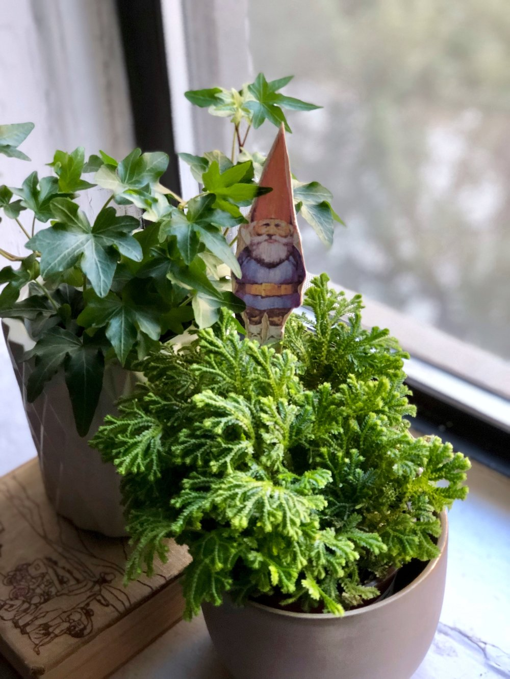 Easy Spring DIY's GNOME PLANTING BUDDY MATERIALS: Printed google gnome image, Balsa wood, Mod Podge, Craft knife