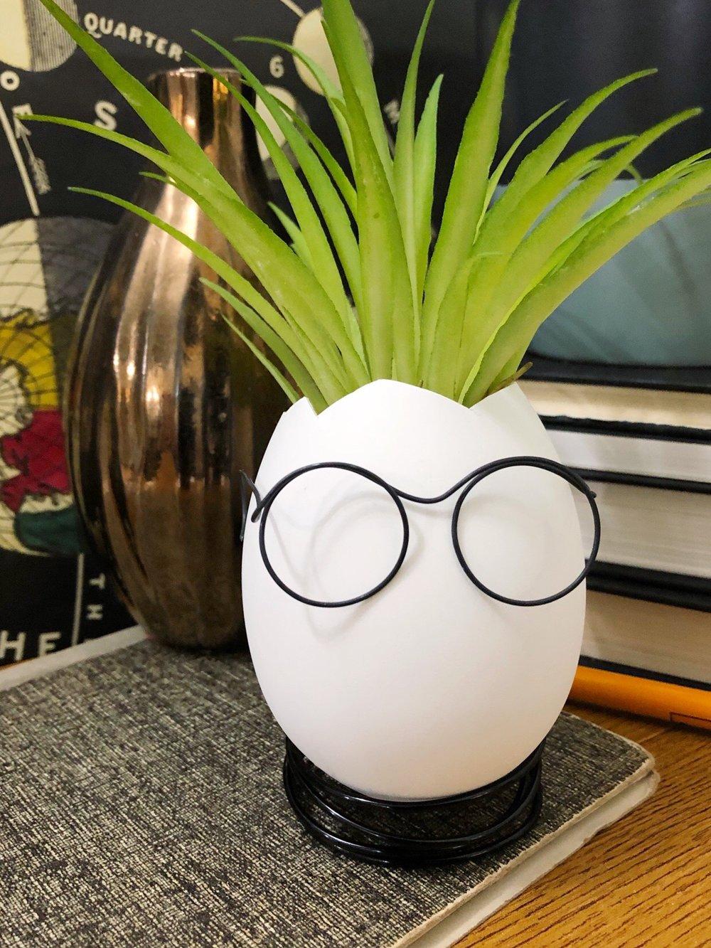 Easter Egg Head DIY   #easter #easterdecorations #eastereggdiy #easteregg #succulent #airplants #nomesseasteregg #plasticeasteregg #springplant #spring #harrypotterdiy #nerddiy #nerd #glasses #fauxplants #decoratingeastereggs #easterdecor #madebymichaels