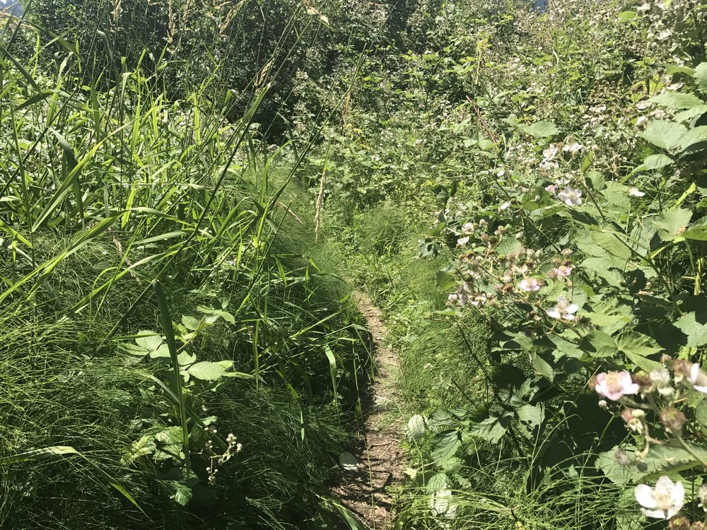 Secret paths