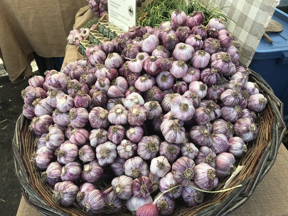 The purplest garlic.