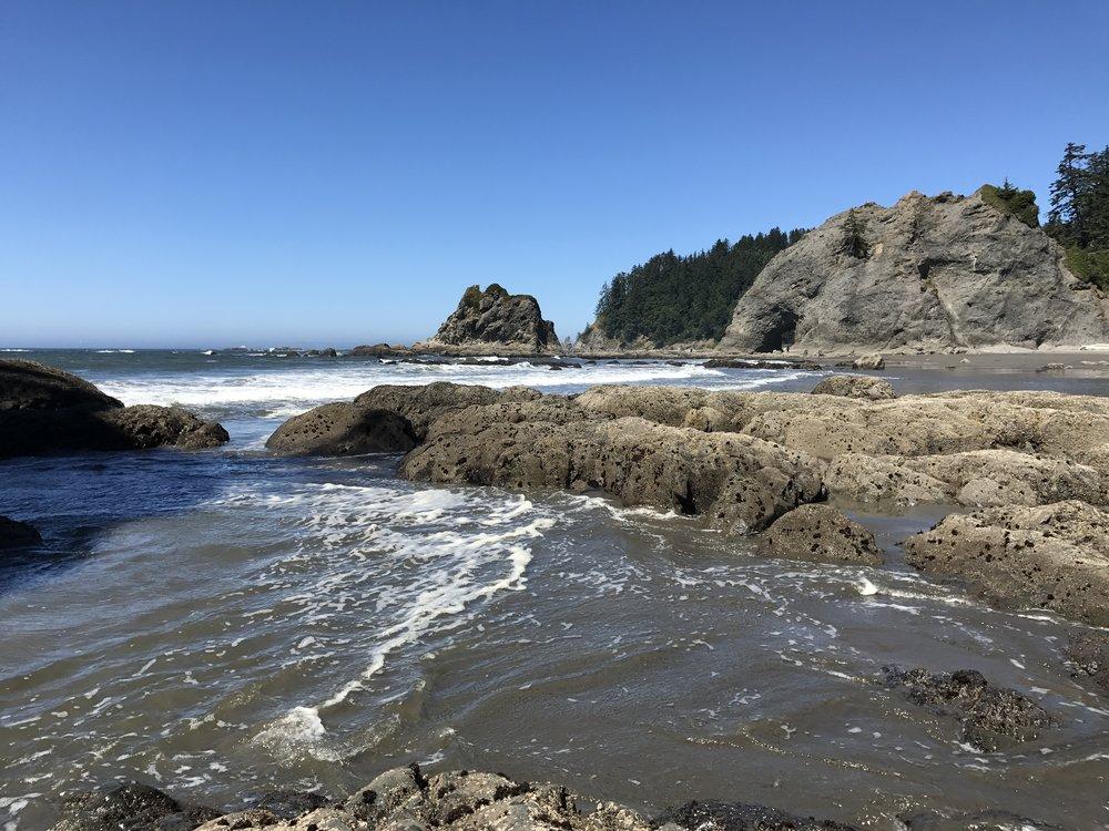 That wild coastline.
