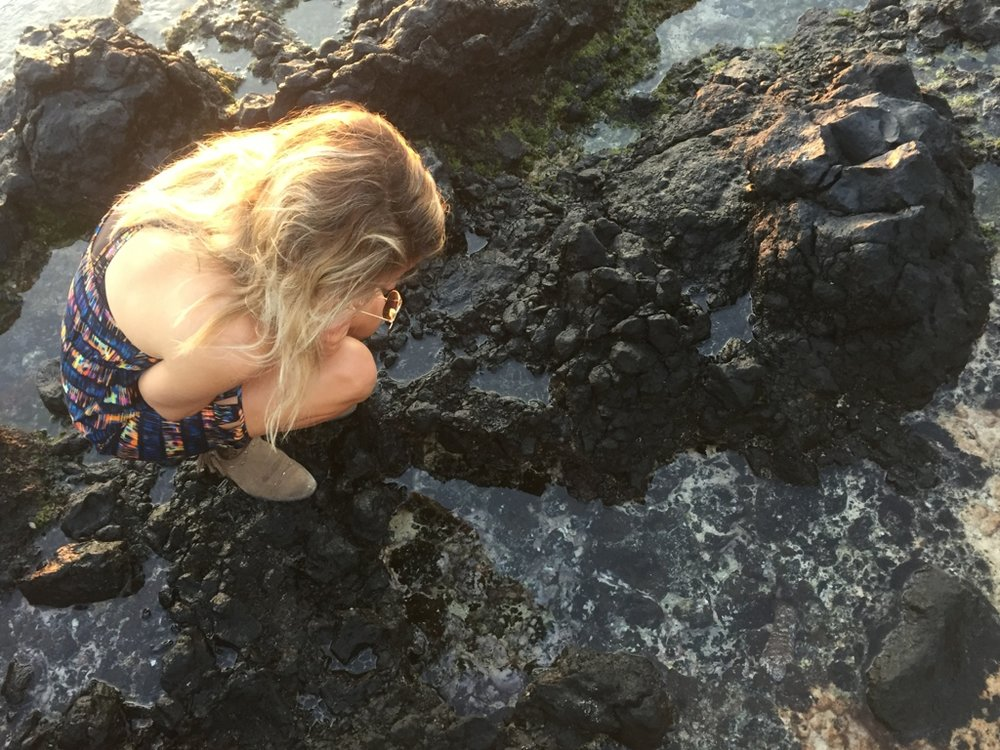 Mystified by the ocean and its power and its tide pools.