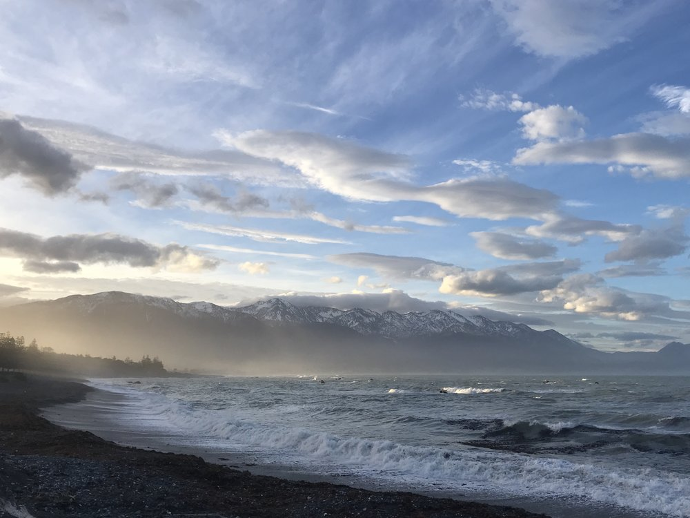 Kaikoura, NZ: moving to places like this makes the stress of packing worth it...