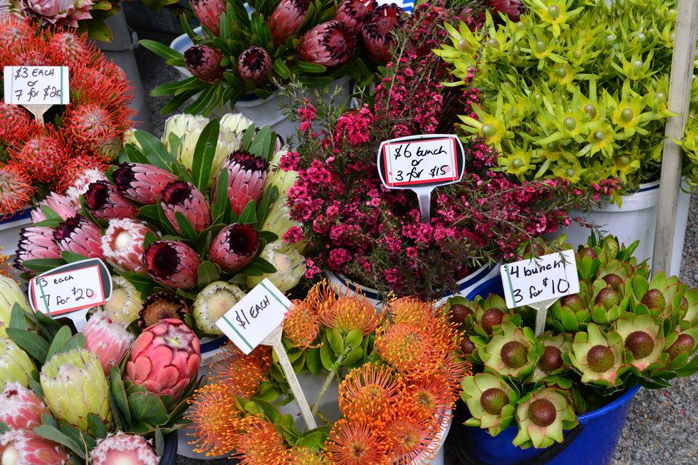 Farmer's Market Christchurch