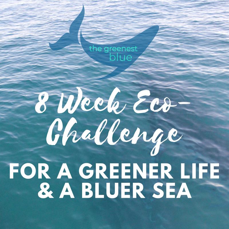 8 Week Eco-Challenge.png