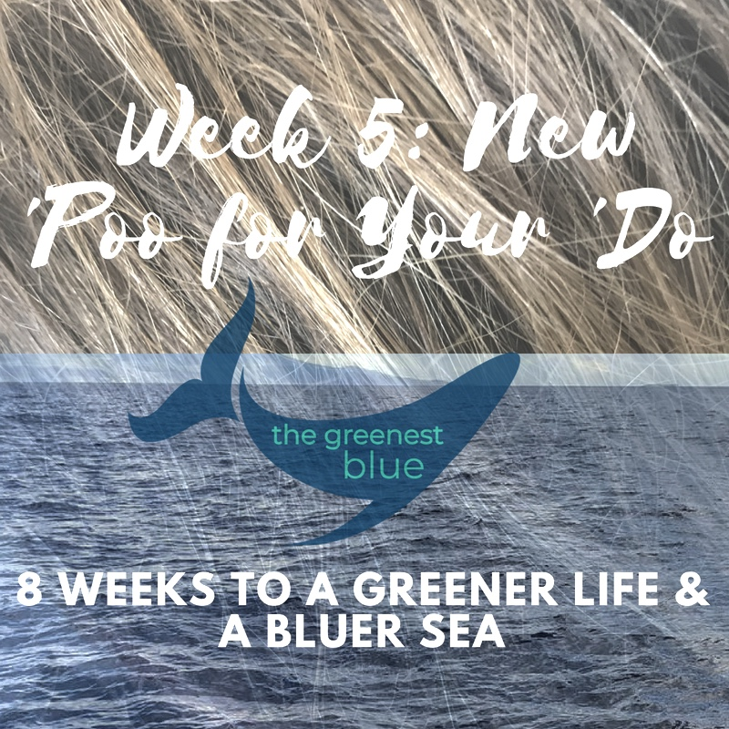 8 Weeks to a Greener Life & a Bluer Sea - Week 5: Give up the Bottle!