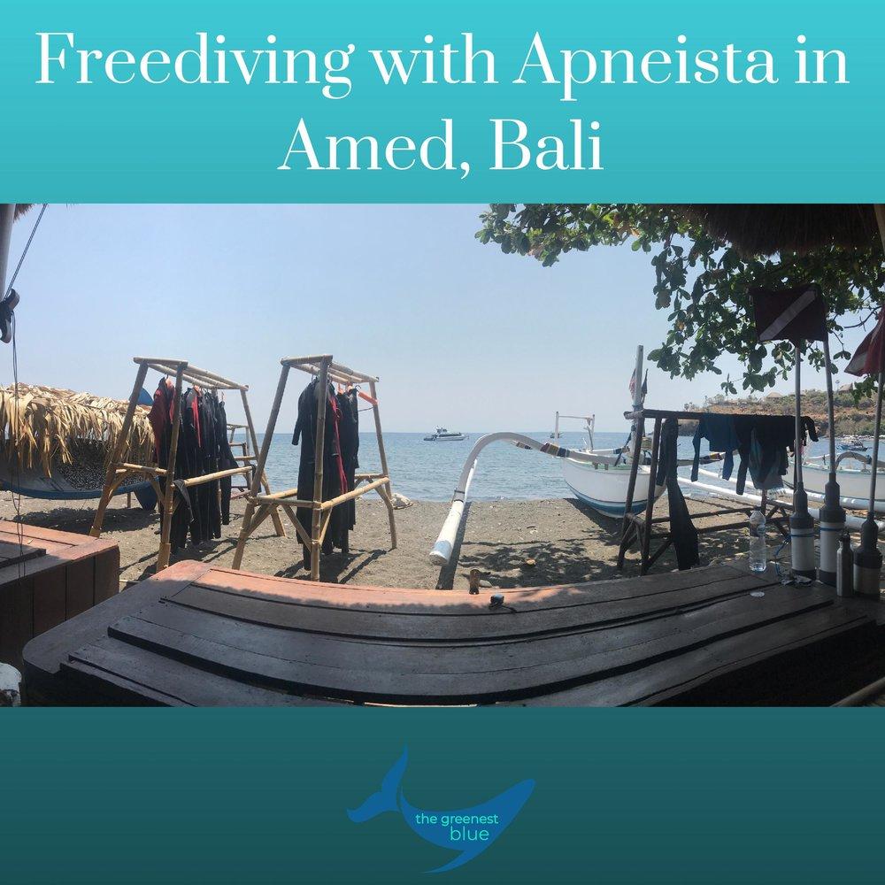 Freediving Apneista