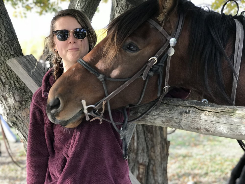 Cardrona Horseback Riding