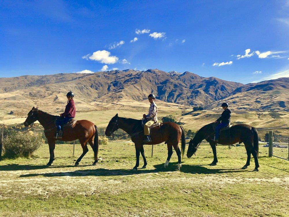 Horseback Riding Cardrona New Zealand