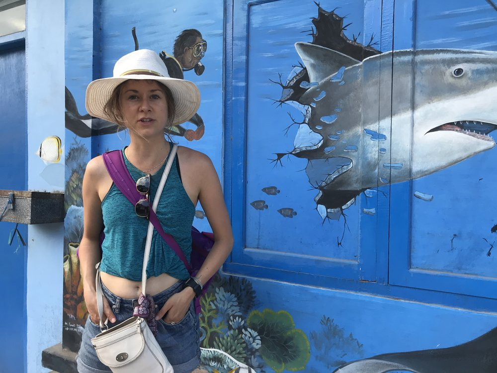 Nusa Penida Street Art