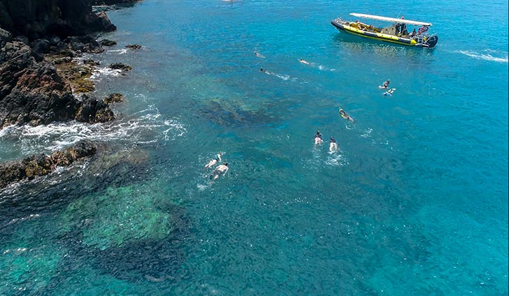 Maui Shore Snorkel with Maui Snorkel Charters