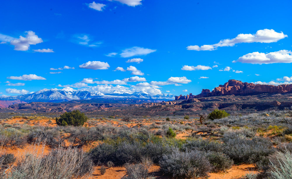 canyonlandspan.jpg