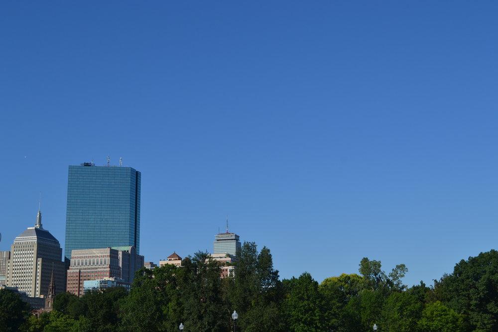 boston; back bay; bri rinehart