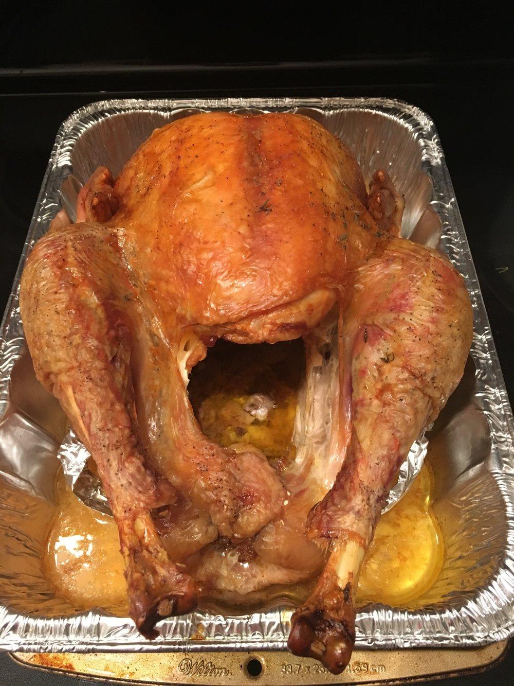 bri rinehart; christmas; turkey