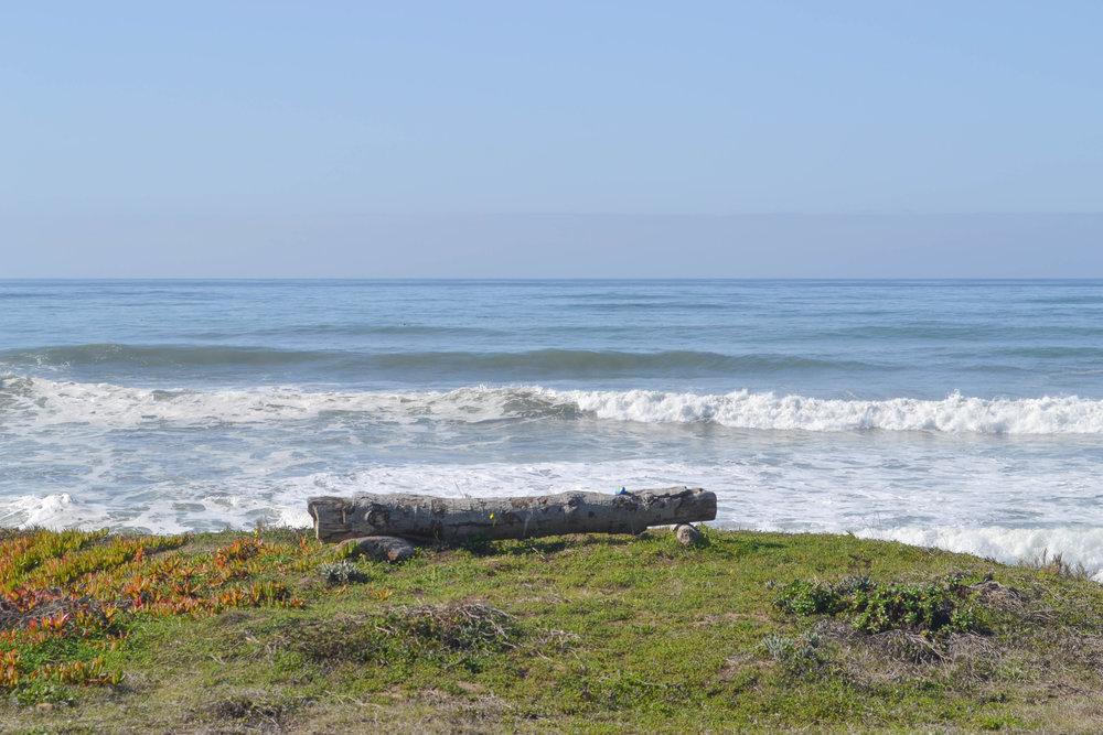 cambria; california; bri rinehart; photography