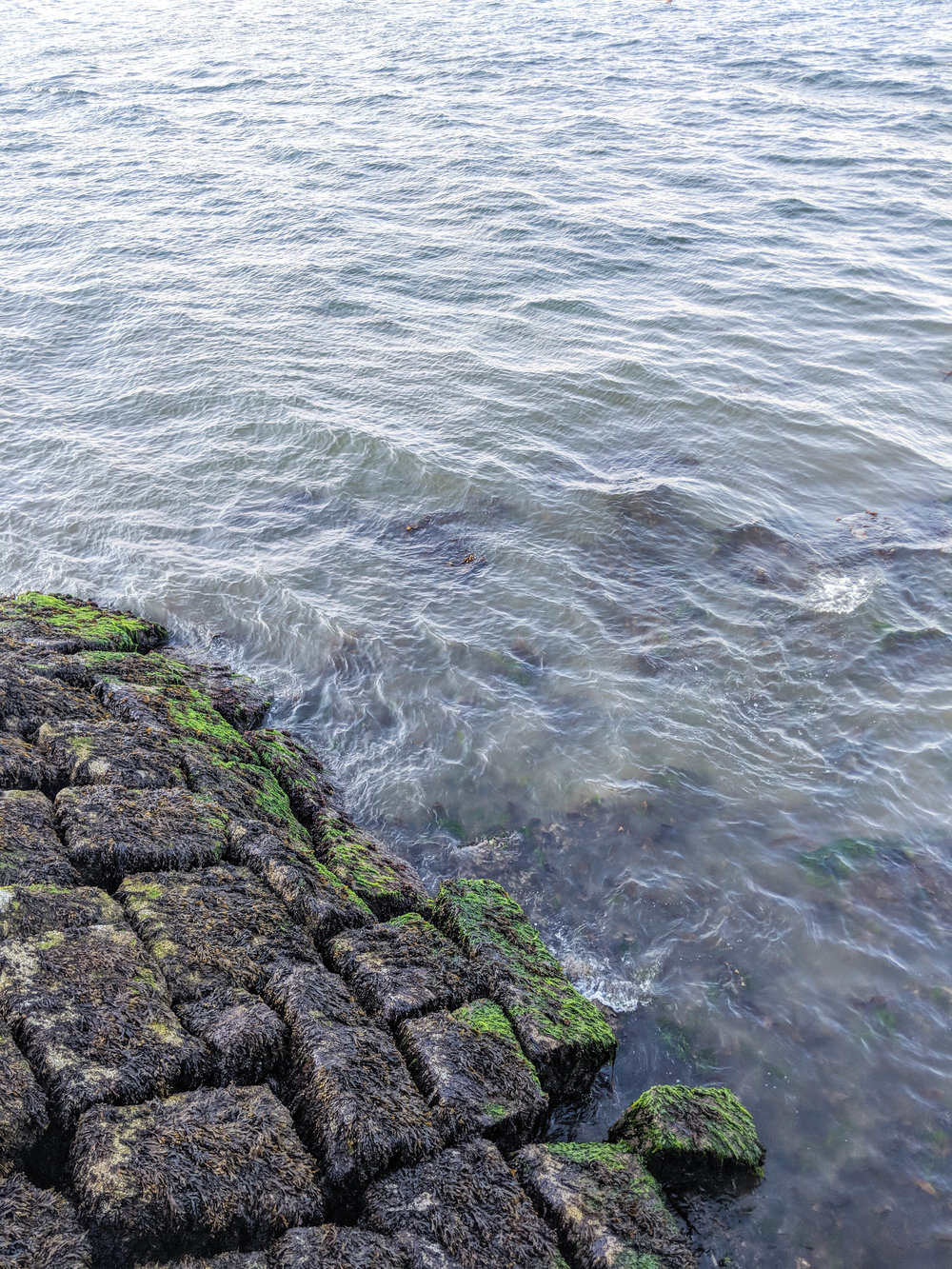 bri rinehart; ocean; photography