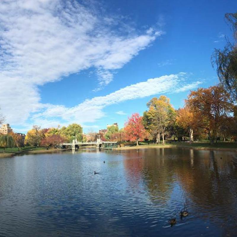 bri rinehart; fall; boston; photographer