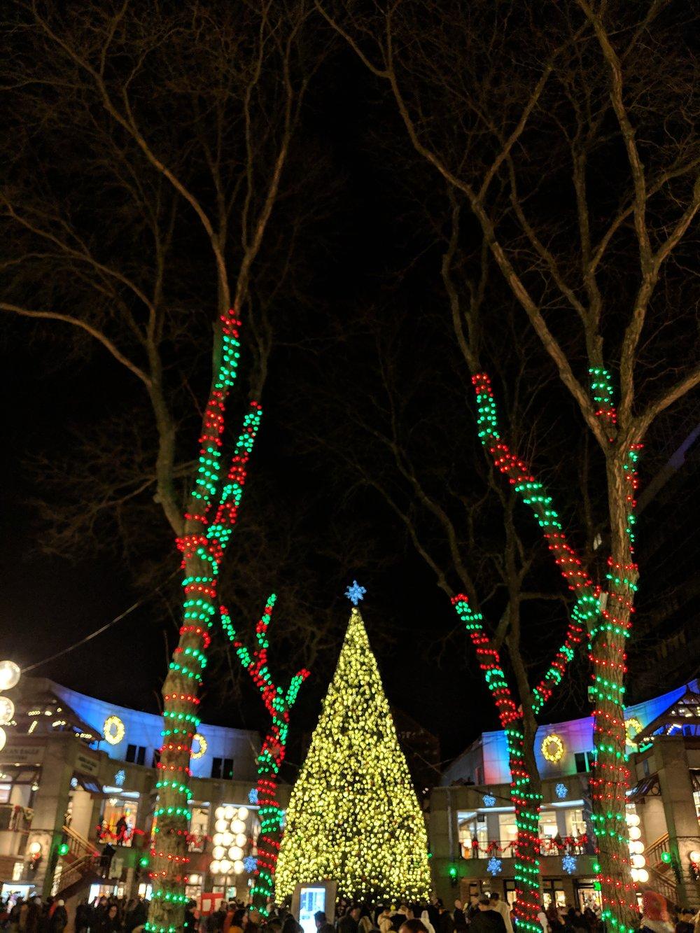 bri rinehart; photography; boston; Christmas; lights; faneuil