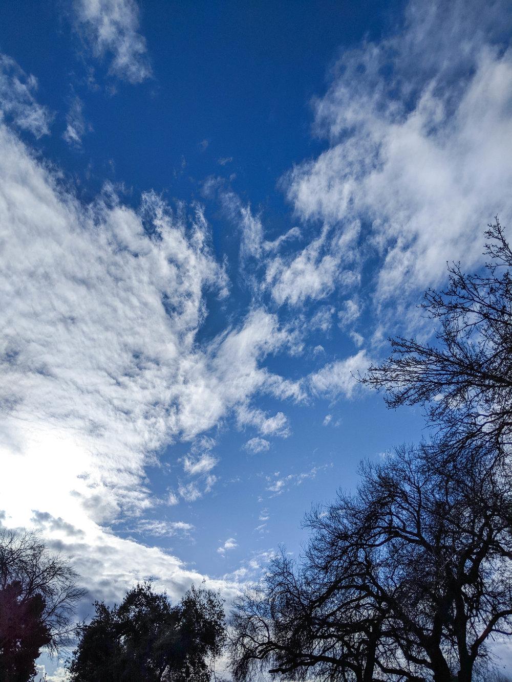bri rinehart; hanford; photography; nature; california