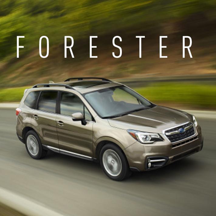 Forester <br><span>(Subaru)</span>