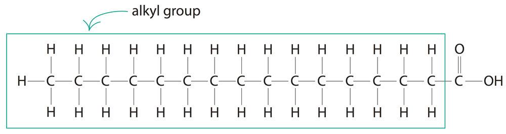 palmitic-acid